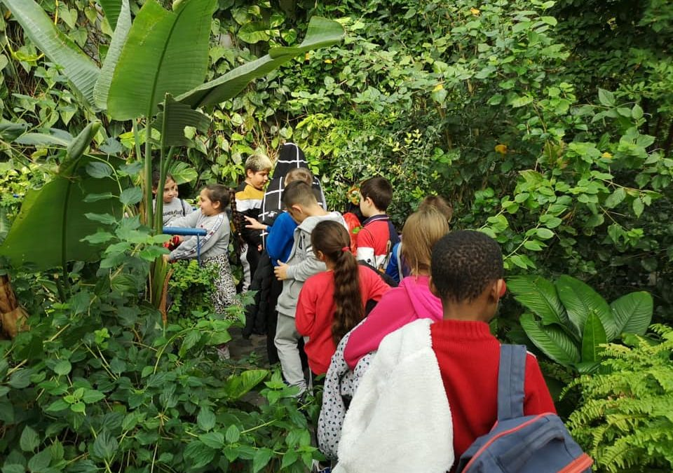 Visita al Parque de las Ciencias